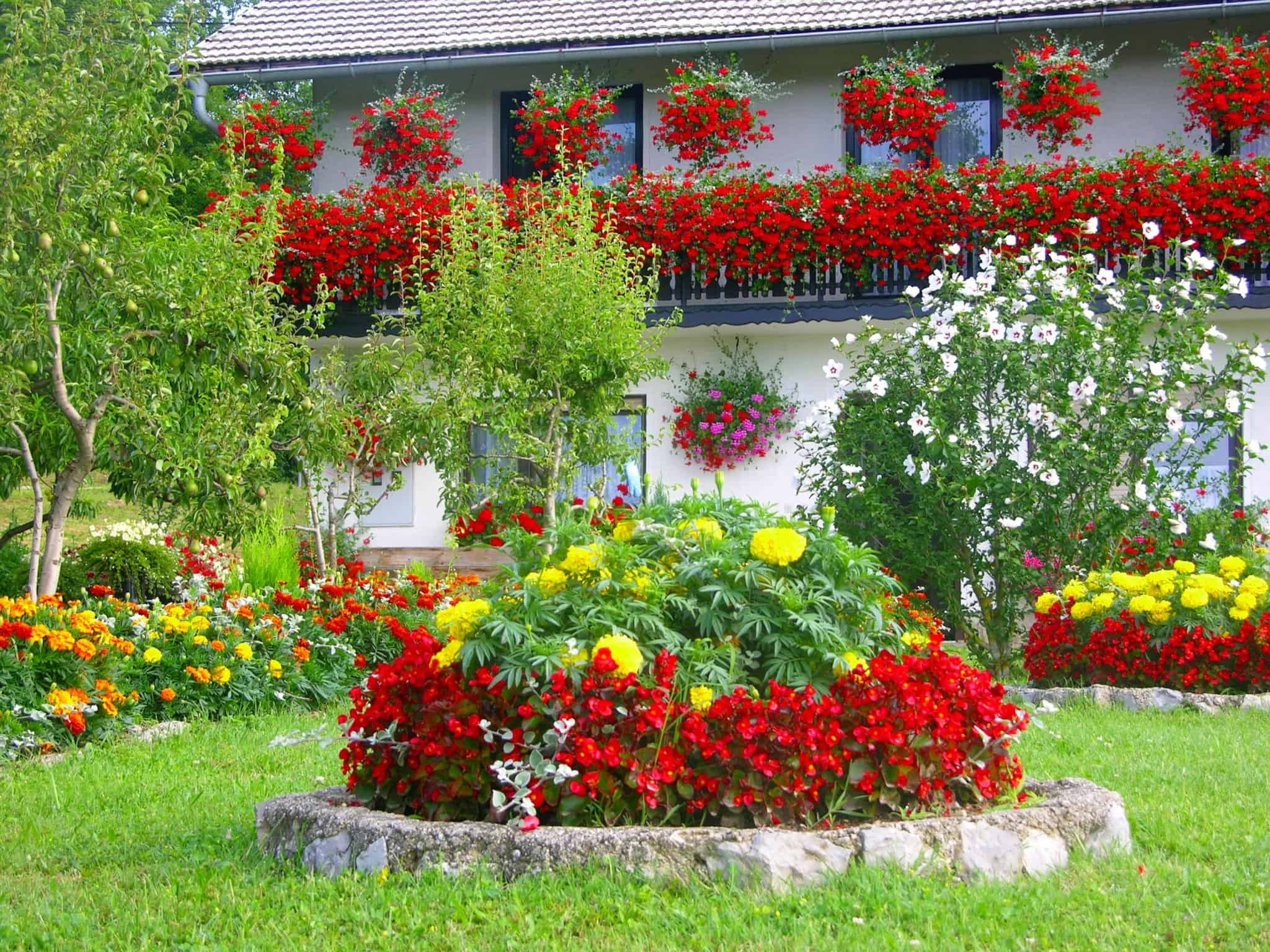 מלון כפרי בקרואטיה