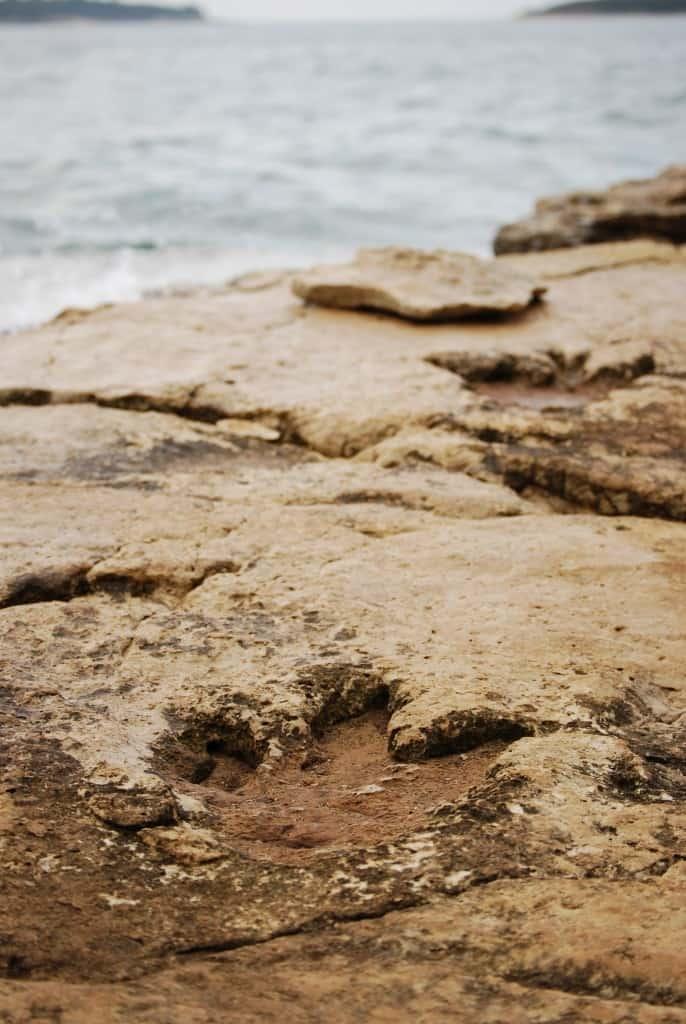 עקבות דינוזאור באיי בריוני